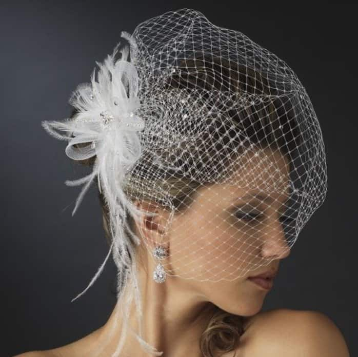 Danica Women's Jeweled Feather Fascinator Comb with Birdcage Veil