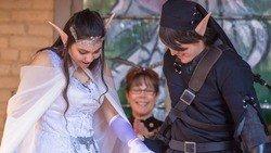 zelda cosplay wedding