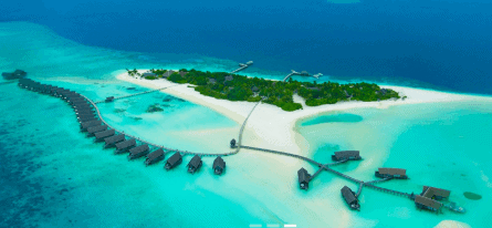 como cocoa island resort and como laalifushi
